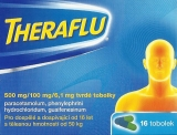 Theraflu 500/100/6,1mg cps.dur.16